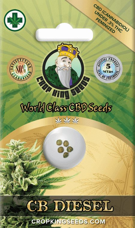 CB Diesel CBD Feminized Marijuana Seeds