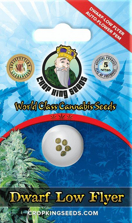 Dwarf Low Flyer Autoflower Marijuana Seeds