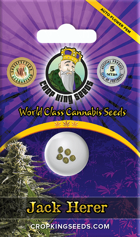 Jack Herer Autoflower Marijuana Seeds
