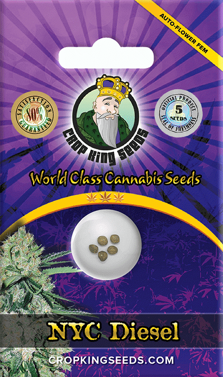 NYC Diesel Autoflower Marijuana Seeds