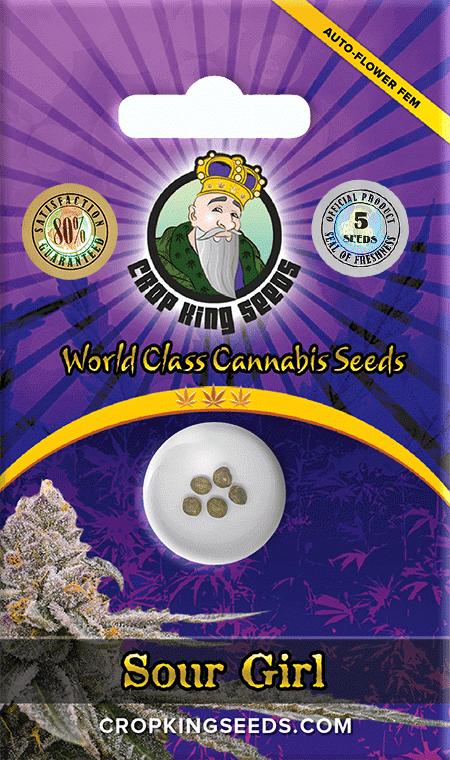 Sour Girl Autoflower Marijuana Seeds