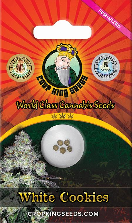 White Cookies Strain Feminized Marijuana Seeds