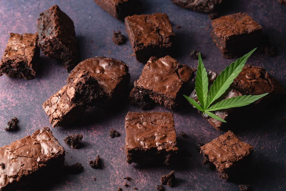 Pot Brownies: Baking Guide for Cannabiseurs