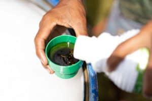 How to Make Homemade Spider Mite Spray