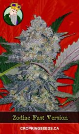 Zodiac Fast Flowering Marijuana Seeds
